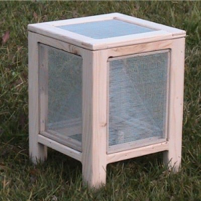Pinowood solar fly trap