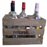6 bottles vintage carrying case
